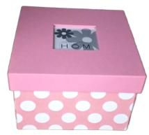 Home essence - square box w/ window, pink polka
